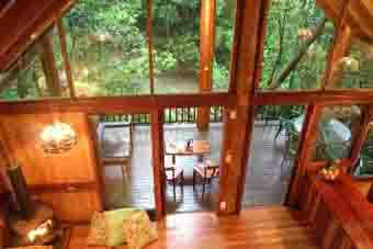 1371.treehouse_from_loft_sml_res.jpg