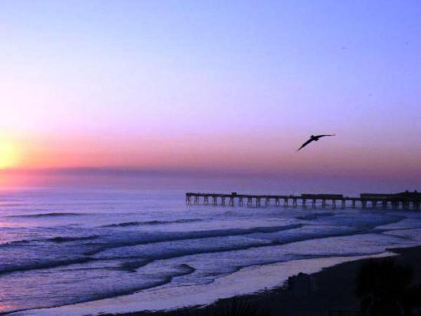 2124.daytona_beach.jpg
