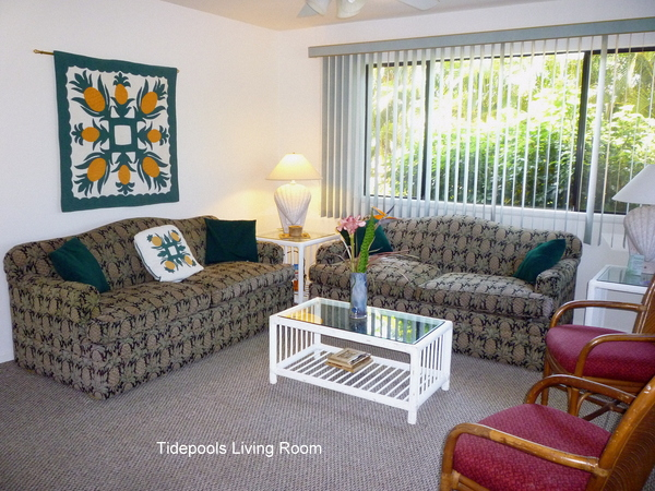 2600.14a-tidepools_living_room_area.jpg