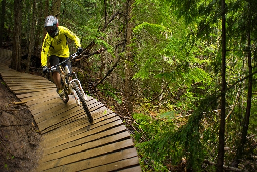 3148.2-TW-whistler-bike-park-bridge.jpg